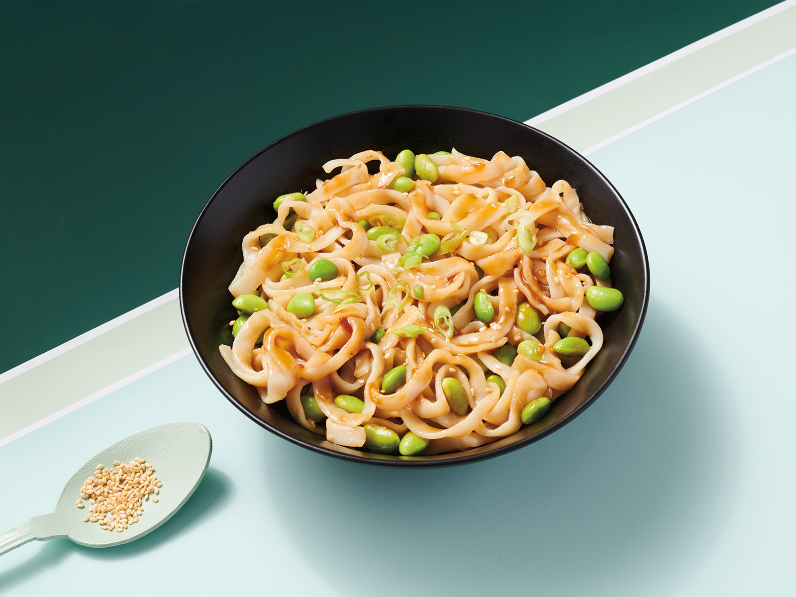 Teriyaki Protein Noodles